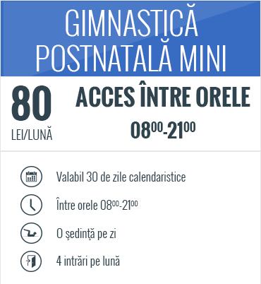 postnatal_mini